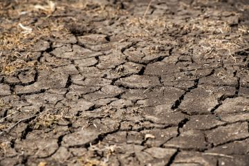 Feast To Famine | How Australian Farmers Are Tackling The Worst Drought In A Century