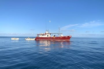 Smooth Sailing: How this Mackay-based fishing business optimised trade during COVID-19