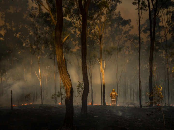 Suncorp ready to support bushfire-affected customers