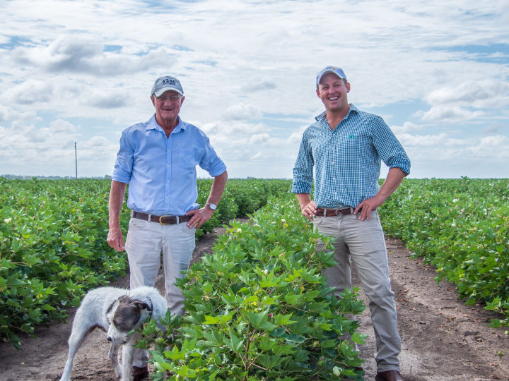 Diving into digital changes a cotton farmer's fortunes